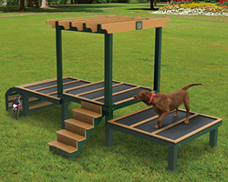 Dog Play Structures